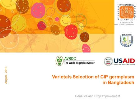 Genetics and Crop Improvement Varietals Selection of CIP germplasm in Bangladesh August, 2013.