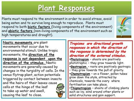 Excretion in Animals, Humans and Plants (with diagram)