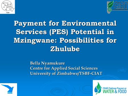 Payment for Environmental Services (PES) Potential in Mzingwane: Possibilities for Zhulube Bella Nyamukure Centre for Applied Social Sciences University.