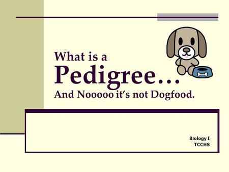 What is a Pedigree… And Nooooo it's not Dogfood.