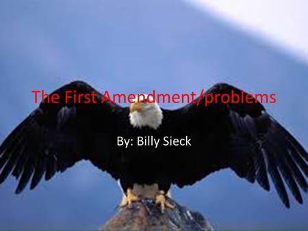 The First Amendment/problems