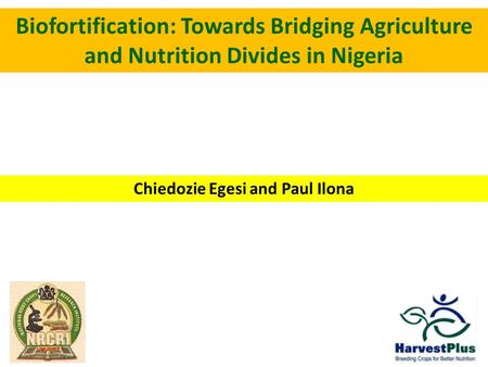 Biofortification: Towards Bridging Agriculture and Nutrition Divides in Nigeria Chiedozie Egesi and Paul Ilona.