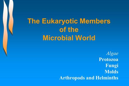 The Eukaryotic Members of the Microbial World Algae Protozoa Fungi Molds Arthropods and Helminths.