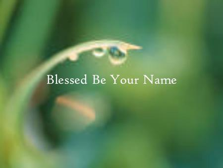 Blessed Be Your Name. In the land that is plentiful Where your streams of abundance flow Blessed be your name Verse 1: