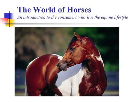The World of Horses An introduction to the consumers who live the equine lifestyle.