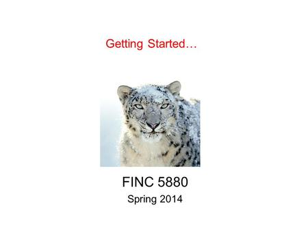 Getting Started… FINC 5880 Spring 2014. Scores FINC 5000.