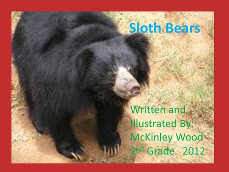 Sloth Bears Written and Illustrated By: McKinley Wood 2 nd Grade 2012.
