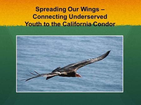 Spreading Our Wings – Connecting Underserved Youth to the California Condor.
