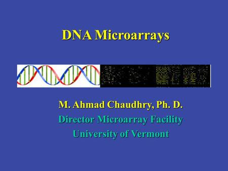 DNA Microarrays M. Ahmad Chaudhry, Ph. D. Director Microarray Facility University of Vermont.