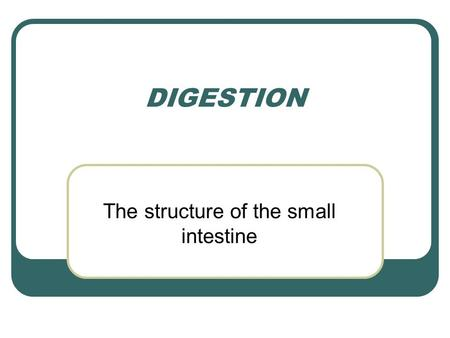 DIGESTION The structure of the small intestine. The structure of the small intestine The ileum is well adapted for absorption It is very long – about.