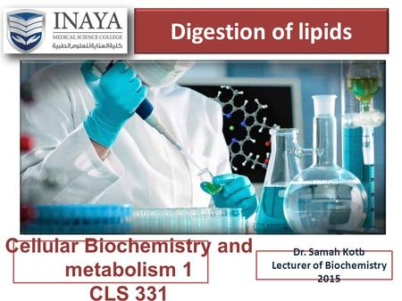 Cellular Biochemistry and metabolism 1 Lecturer of Biochemistry