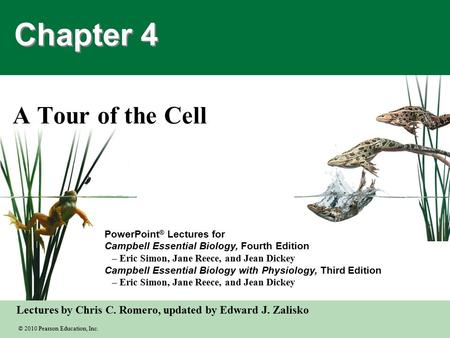 © 2010 Pearson Education, Inc. Lectures by Chris C. Romero, updated by Edward J. Zalisko PowerPoint ® Lectures for Campbell Essential Biology, Fourth Edition.