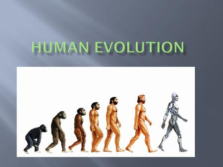 Kingdom Animal Phylum Chordate Class Mammal Order Primates Family Hominids Genus Homo Species Sapiens.