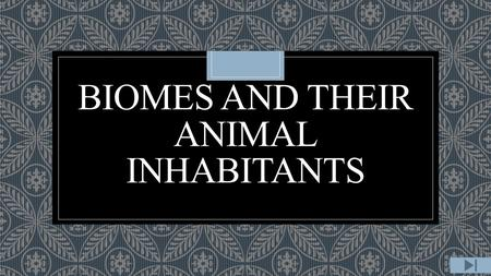 BIOMES AND THEIR ANIMAL INHABITANTS. Content Area: Science Grade Level: 2 ◦Summary: The purpose of this instructional PowerPoint is to teach the students.