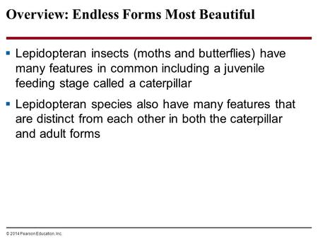 © 2014 Pearson Education, Inc. Overview: Endless Forms Most Beautiful  Lepidopteran insects (moths and butterflies) have many features in common including.