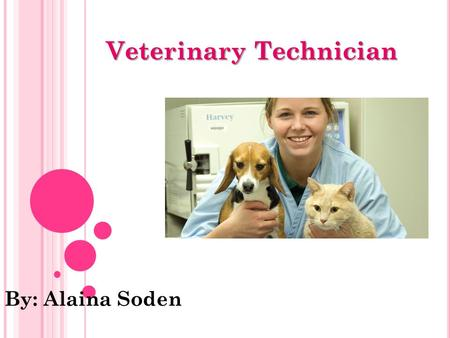 Veterinary Technician By: Alaina Soden.  the care for animals  what I want to be  spend time with animals  you gain trust.