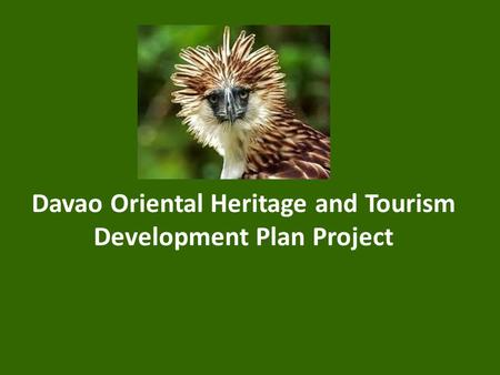 Davao Oriental Heritage and Tourism Development Plan Project.