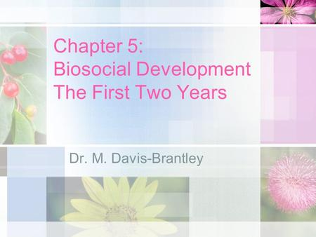 Chapter 5: Biosocial Development The First Two Years Dr. M. Davis-Brantley.