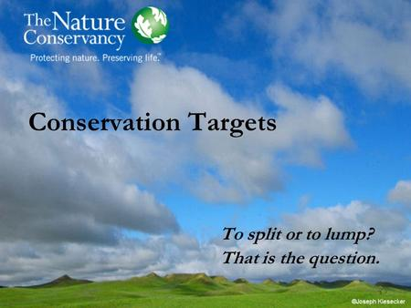 Conservation Targets To split or to lump? That is the question.