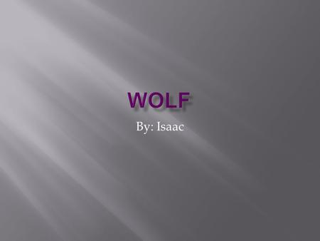 By: Isaac Today I am going to tell you about wolves.