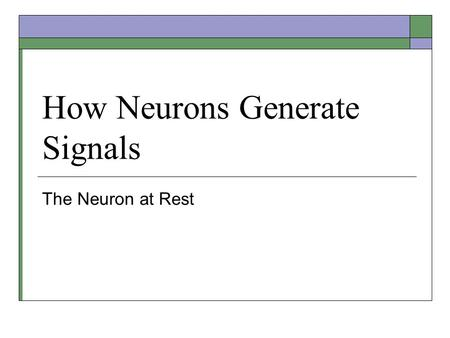 How Neurons Generate Signals The Neuron at Rest. Stepping on a Thumbtack  Reflexive withdrawal of the foot – a simple behavior controlled by a circuit.