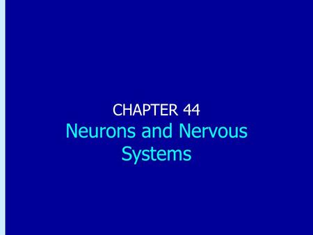 Chapter 44: Neurons and Nervous Systems CHAPTER 44 Neurons and Nervous Systems.