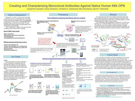 Creating and Characterizing Monoclonal Antibodies Against Native Human Milk OPN Josephine Cassella, Tanya Gordonov, Christian C. Kazanecki, Bhumika Desai,