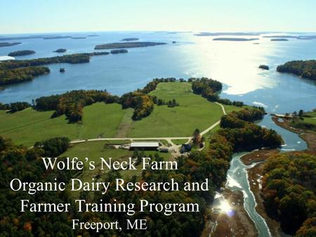 Wolfe's Neck Farm Organic Dairy Research and Farmer Training Program Freeport, ME.