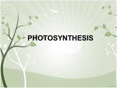 PHOTOSYNTHESIS. I. Autotrophs and Heterotrophs SUN A. Energy for living things comes from the SUN B. Plants and other organisms use light energy from.