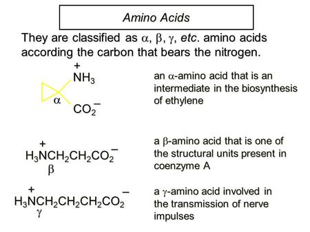 Amino Acids NH3NH3NH3NH3+ CO2CO2CO2CO2 – an  -amino acid that is an intermediate in the biosynthesis of ethylene + H 3 NCH 2 CH 2 CO 2 – a  -amino acid.