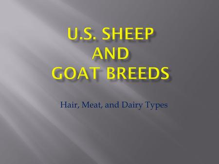 Hair, Meat, and Dairy Types.  Meat Breeds  Ewe Breeds  Dual Purpose Breeds  Wool Breeds  Hair Breeds Five Classifications - 26 – 30 Breeds in US.
