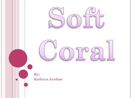 By: Kathryn Jardine. W HERE IS SOFT CORAL FOUND ?