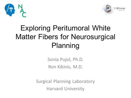 Exploring Peritumoral White Matter Fibers for Neurosurgical Planning Sonia Pujol, Ph.D. Ron Kikinis, M.D. Surgical Planning Laboratory Harvard University.