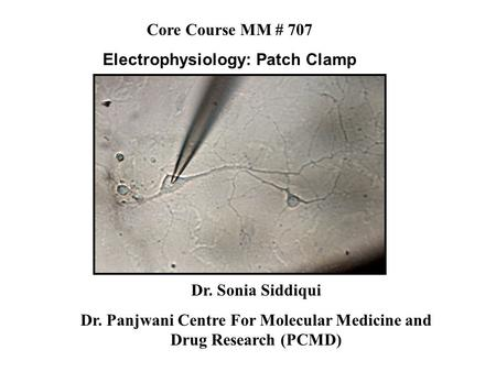 Dr. Sonia Siddiqui Dr. Panjwani Centre For Molecular Medicine and Drug Research (PCMD) Core Course MM # 707 Electrophysiology: Patch Clamp.