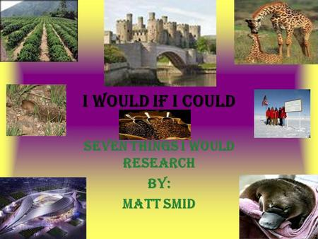 I would if I could Seven things I would research By: Matt Smid.