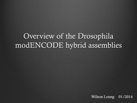 Overview of the Drosophila modENCODE hybrid assemblies Wilson Leung01/2014.