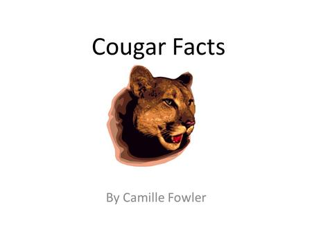 Cougar Facts By Camille Fowler. Cubs Did you know that a baby cougar is a cub? They weigh about a pound when they are born. They are born with their eyes.
