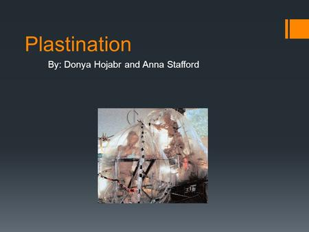 Plastination By: Donya Hojabr and Anna Stafford. Why We Chose This Topic We chose this topic because we are both interested in how general objects are.