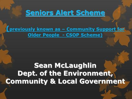 Seniors Alert Scheme Sean McLaughlin Dept. of the Environment, Community & Local Government Seniors Alert Scheme ( previously known as – Community Support.
