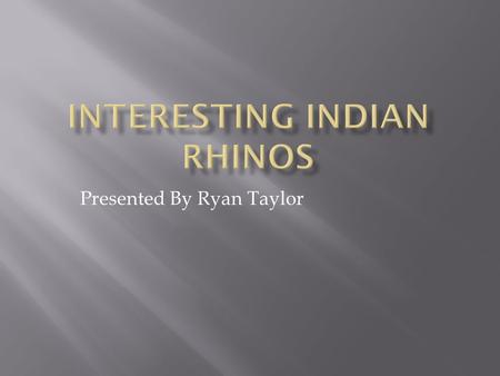 Presented By Ryan Taylor  The Indian rhino is a one of 5 types of rhino.  Like other rhinos there endangered.  There closest relative is a horse or.