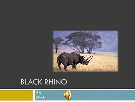 BLACK RHINO By: Mack Physical Characteristics  Adults weigh from 2000 to 4000 Lb.  2 horns, front horn 53 in. long  Moves up to 35 mph. when charging.