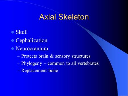 Axial Skeleton Skull Cephalization Neurocranium – Protects brain & sensory structures – Phylogeny – common to all vertebrates – Replacement bone.