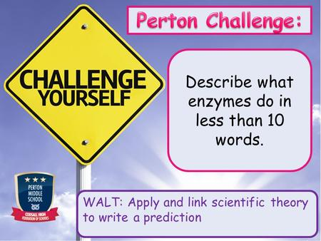 Describe what enzymes do in less than 10 words. WALT: Apply and link scientific theory to write a prediction.