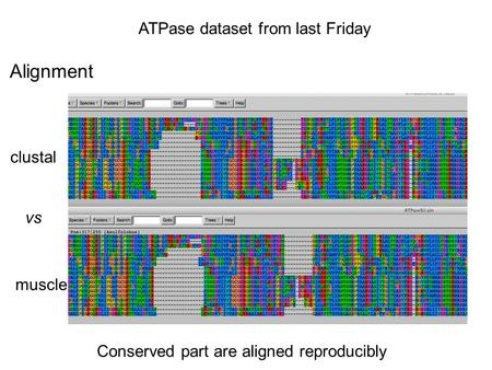 ATPase dataset from last Friday Alignment clustal vs muscle Conserved part are aligned reproducibly.