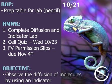 HMWK: 1.Complete Diffusion and Indicator Lab 2.Cell Quiz – Wed 10/23 3.FV Permission Slips – due Nov 4 th 10/21 BOP: Prep table for lab (pencil) OBJECTIVE:
