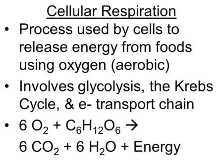 Cellular Respiration Process used by cells to release energy from foods using oxygen (aerobic) Involves glycolysis, the Krebs Cycle, & e- transport chain.
