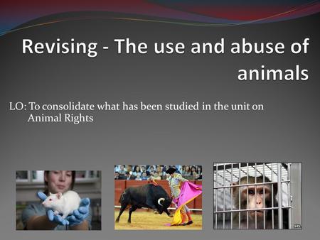 Essay On Animal Abuse