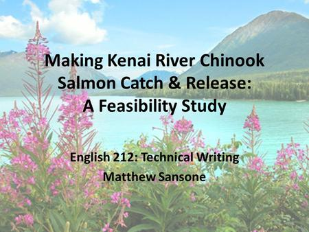 Making Kenai River Chinook Salmon Catch & Release: A Feasibility Study English 212: Technical Writing Matthew Sansone.