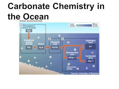 Carbonate Chemistry in the Ocean