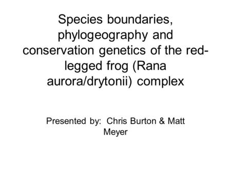 Species boundaries, phylogeography and conservation genetics of the red- legged frog (Rana aurora/drytonii) complex Presented by: Chris Burton & Matt Meyer.